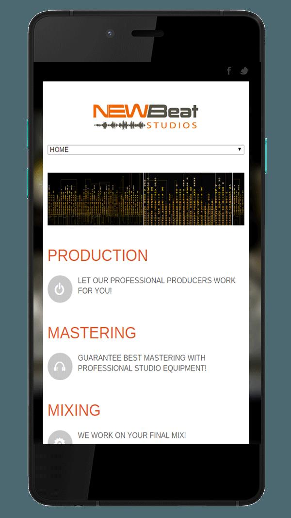 musicwebdesigner Musicwebdesigner slide1